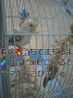 m1132198189261427.jpg