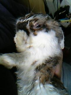 風呂上がり3