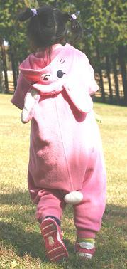 ピンクウサギ