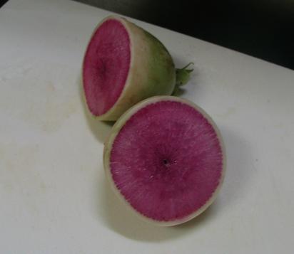 紫ダイコン2