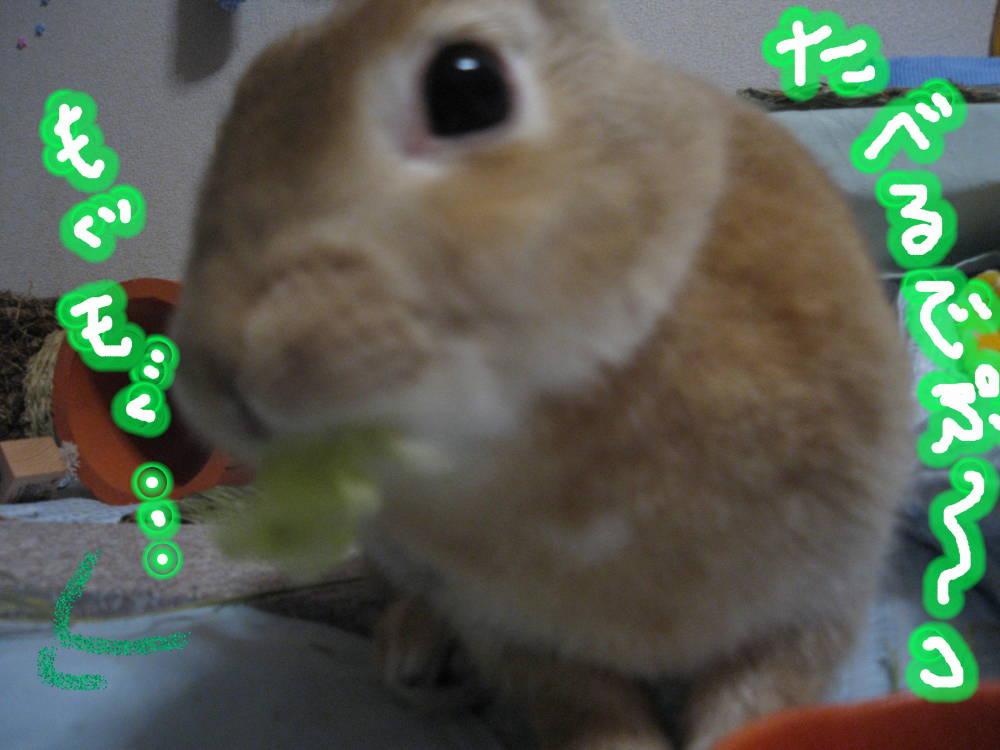 食べるでぷ〜っ