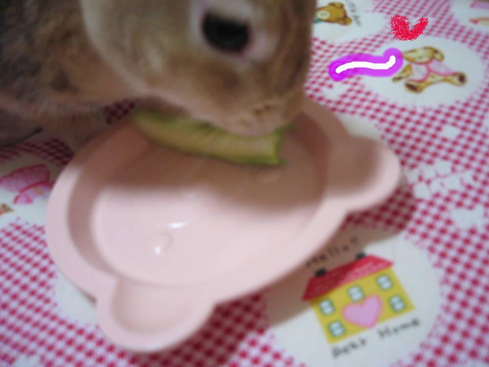ブロッコリーでぷ〜♪